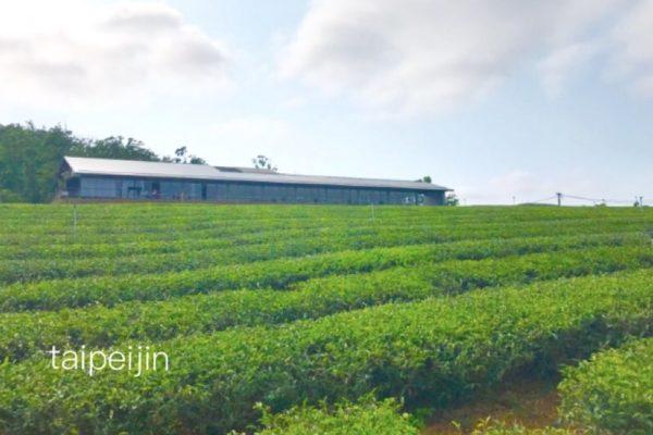 銅鑼茶廠全景