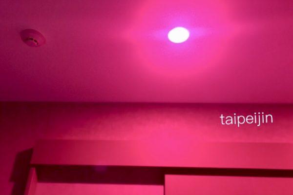 赤紫色のお部屋
