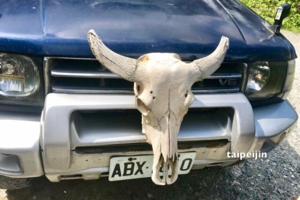 水牛の骨付き車