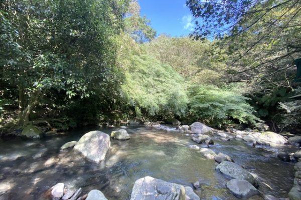 大自然の川