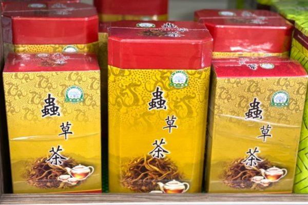 冬虫夏草茶