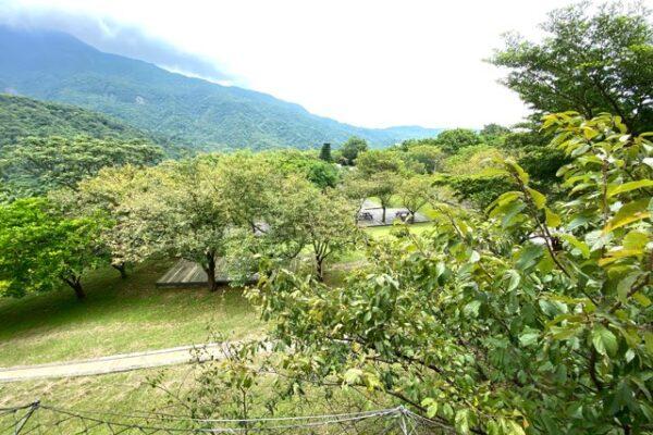 陽明山天籟渡假酒店外の風景